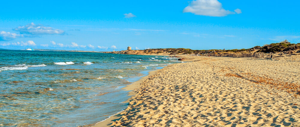 Ibiza Trips